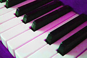 Wingsdomain Art and Photography - Piano Keys . v2 . Purple