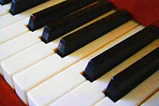 Wingsdomain Art and Photography - Piano Keys . v2