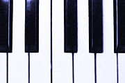 Wingsdomain Art and Photography - Piano Keys