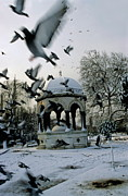 Sami Sarkis - Pigeons flying near a fountain under...