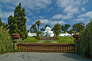 Conservatory Of Flowers Photos - Planters and Conservatory by Tim Mulina