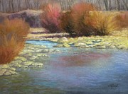 Green Grass Pastels Originals - Platte River Willows by Paula Ann Ford