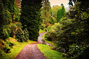 Jenny Rainbow - Pleasant Path. Benmore Botanical...