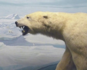 Mary Ann  Leitch - Polar Bear Diorama