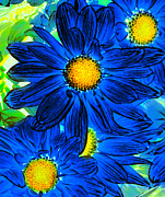 Amy Vangsgard - Pop Art Daisies 15