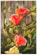 B Rossitto - Poppies by the Fence