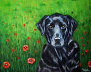 Dog Art Framed Prints - Poppy - Labrador Dog in Poppy Flower Field Framed Print by Michelle Wrighton
