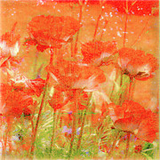 Poppies Canvas Posters - Poppy Praise Poster by Linde Townsend