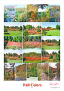 Peter L Wyatt - Poster - Fall Colors -2