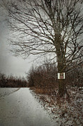 Snow Board Prints - Private property sign on tree in winter Print by Sandra Cunningham