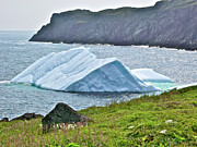 Pup Digital Art - PUP TENT Iceberg seen from Long Point by Ruth Hager