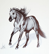 Horse Drawings Posters - Quarter Horse at Lope Poster by Cheryl Poland
