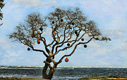 Cheryl Young - Rare Buoy Tree
