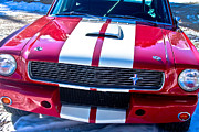 Red Photographs Framed Prints - Red 1966 Mustang Shelby Framed Print by James Bo Insogna