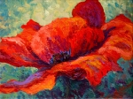 Tuscany Posters - Red Poppy III Poster by Marion Rose