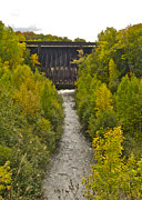 Michael Peychich - Redridge Steel Dam 7844