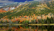 Brenda Giasson - Reflections of Crawford Notch