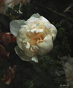 RC DeWinter - Remembrance in White