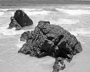 Chris Smith - Rocks On a Beach Byron Bay Black and...