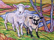Farming Pastels Framed Prints - Romney Lamb And Suffolk Lamb Framed Print by Dianne  Connolly