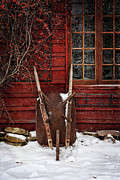 Snowy Prints - Rusty wheelbarrow leaning against barn in winter Print by Sandra Cunningham