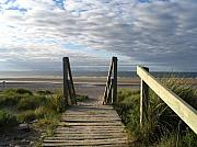 Yvonne Ayoub - Scotland Findhorn Boardwalk
