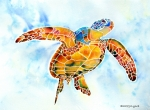 Watercolor  Painting Framed Prints - Sea Turtle Gentle Giant Framed Print by Jo Lynch