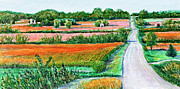 Gravel Road Painting Framed Prints - September Patchwork Framed Print by David Bratzel