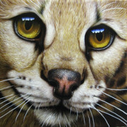 Eyes Painting Framed Prints - Serval Framed Print by Jurek Zamoyski