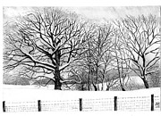 After Snowstorm Prints - Snow Scene Aberdare Country Park Print by Alwyn Isaac