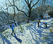 Andrew Macara - Snowball fight