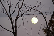 Man In The Moon Photo Posters - Spooky Moon Poster by Deborah Smolinske