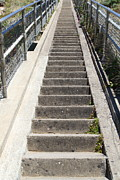 Wingsdomain Art and Photography - Stairs Coming Down to The Point Reyes...