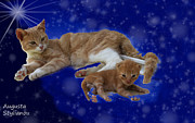 Augusta Stylianou - Starry Cat and Kitten