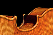 Violins Photos - Stradivarius Back Corner by Endre Balogh
