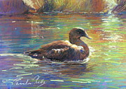 Riverbank Pastels Posters - Sues Duck Poster by Pamela Pretty