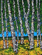 Tracy Levesque - Summer Birches