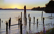 Columbia River Pyrography - Sunset on the Bay by Leo James