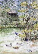 Spring Scenes Originals - The Birdwatcher Hut by Phong Trinh