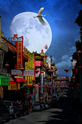 Wingsdomain Art and Photography - The Great White Phoenix of Chinatown ....