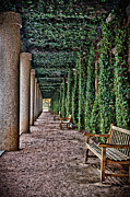Park Benches Framed Prints - The Long Courtyard Framed Print by James Woody