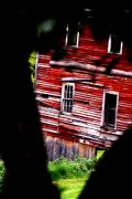 Emily Stauring - The Old Mill