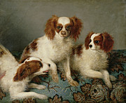English School - Three Cavalier King Charles Spaniels on...