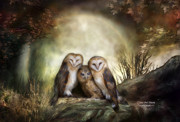 Carol Cavalaris - Three Owl Moon