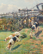 Arthur Charles Dodd - Through the Fence