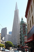 Wingsdomain Art and Photography - Transamerica Pyramid Through North...