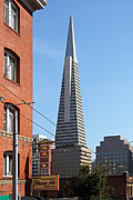 Wingsdomain Art and Photography - Transamerica Pyramid Tower in San...