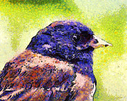 Wingsdomain Art and Photography - Van Gogh.s Little Chickadee . 7D6397