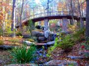 Anne Cameron Cutri - Waterfall and a Bridge in the Fall