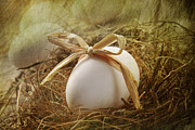 Nest Metal Prints - White egg with straw bow in nest Metal Print by Sandra Cunningham